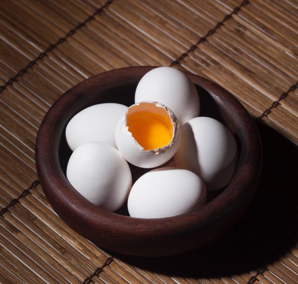 Gezond ontbijt - een ei hoort er bij