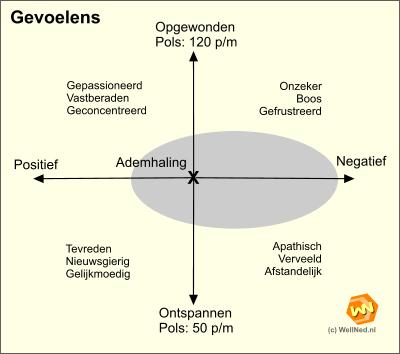 Gevoelens en hormonen