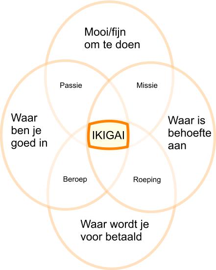 Boekbespreking: ikigai - het geheim voor een lang een gelukkig leven